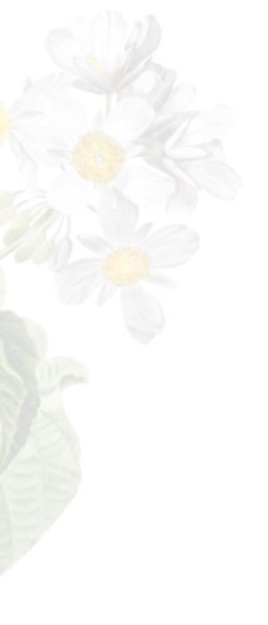 Contato - Chácara Flor da Suissa