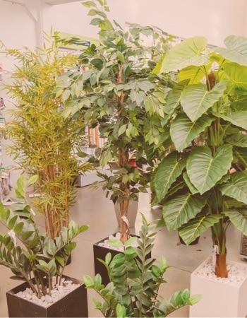Chácara Flor da Suissa - Plantas Artificiais