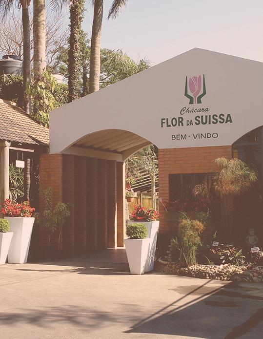 Histórico - Flor da Suissa