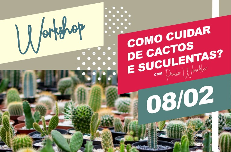 Workshop - Cactos e Suculentas