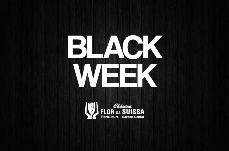 Black Week - Flor da Suissa